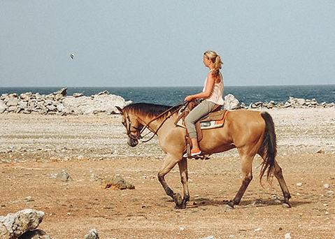 Paardrijden op Bonaire