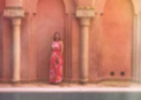 Riad le Perroquet Blue Suites en Spa in Marrakesh
