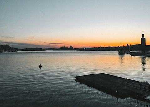 Zweden1-490-x-350.jpg