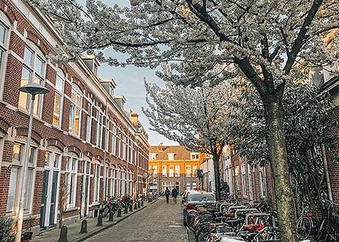 Weetjes over Utrecht