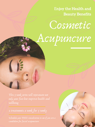 Facial Acupuncture Series