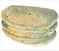 Mouldy bread?
