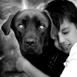 Dog & Child Portraits Adelaide