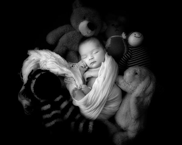 Newborn Baby Portraits Adelaide