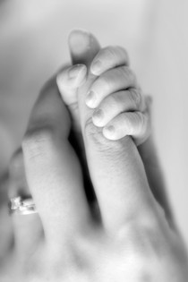 Newborn Photography Adelaide