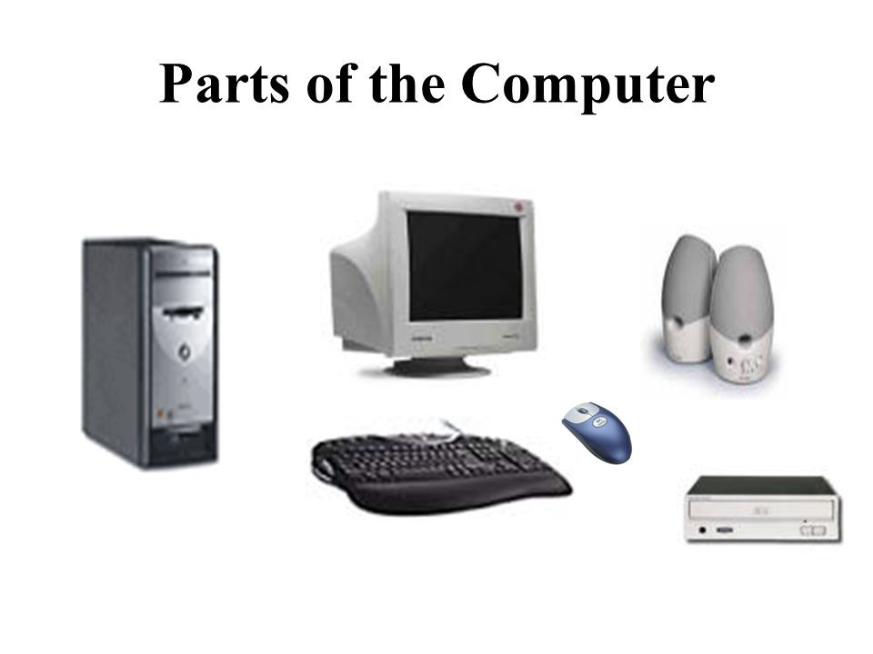 Parts of the Computer (03)