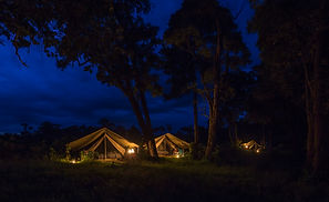 www.davesimpsonsafaris.com, mobile camp, camping, design, light weight, fun, Kenya