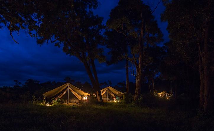 www.davesimpsonsafaris.com, camping Mara, tent