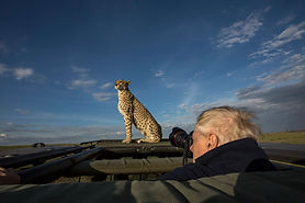 """Getting a Good View"", Camping Safari, Maasai Mara, www.davesimpsonsafaris.com, Kenya, camping, safari, great, fun, private, exclusive."