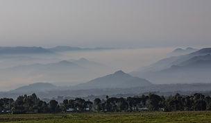 www.davesimpsonsafaris.com, Rwanda, mist, hills