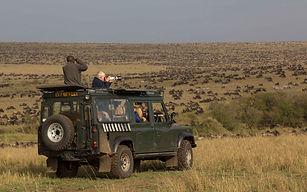 www.davesimpsonsafaris.com, safari, camping, adventure, migration, Maasai Mara, Kenya