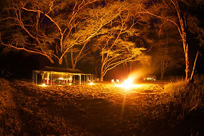light, camping safari, Nakuru, dark, safari, Kenya, wild, natural, comfortable, www.davesimpsonsafaris.com