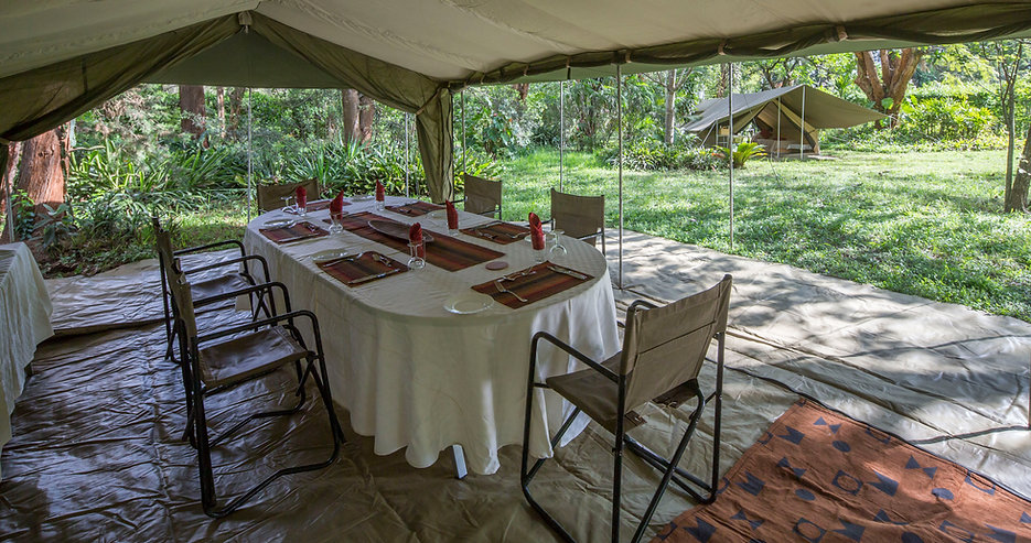 Dave Simpson, Gold guide, Kenya, safari, safaris, KPSGA, Dave Simpson Safaris, www.davesimpsonsafaris.com, luxury adventure, camping, photographic, photography, family, private, exclusive, wild, fun, amazing, affordable, our dining tent