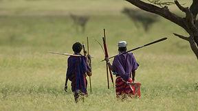 www.davesimpsonsafaris.com, Tanzania, safari, adventure, fun, maasai, walking, spears
