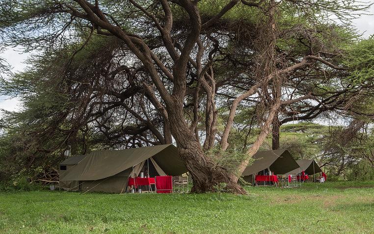Camping, www.davesimpsonsafaris.com, Samburu, tent