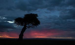 Sunset, Maasai Mara, Kenya, www.davesimpsonsafaris.com