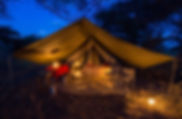 Tent, camping, safari, Kenya, Samburu, www.davesimpsonsafaris.com.jpg