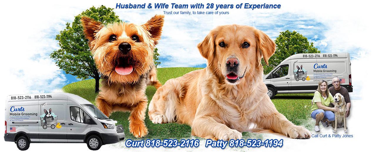 header website 4-12-19.jpg