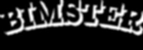 BIMSTER logo-2.png
