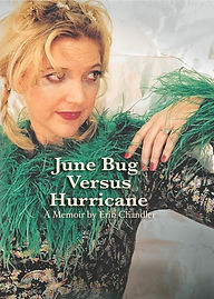 Erin Chandler - June Bug Versus Hurricane