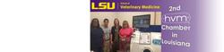 LSU School of Veterinary Medicine