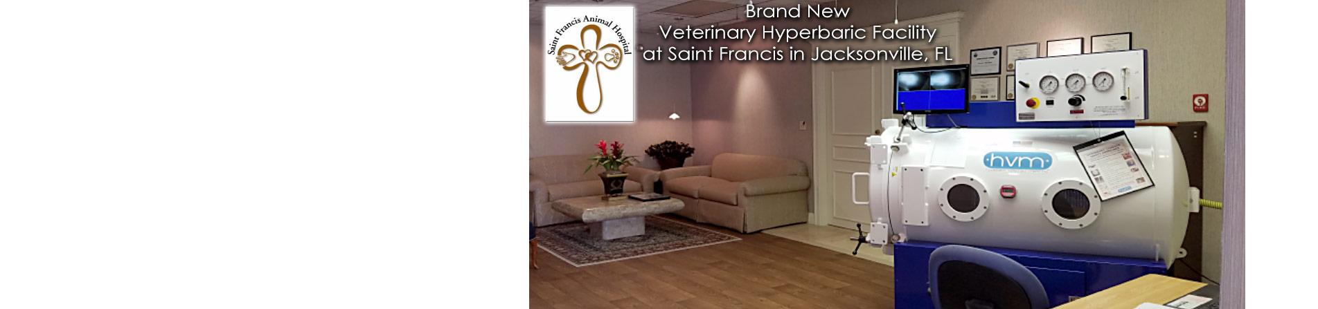Saint Francis New HBOT Facility