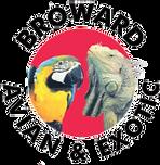 Broward-Avian-and-Exotic-Animal-Hospital-1.png