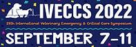 IVECCS2022.jpg