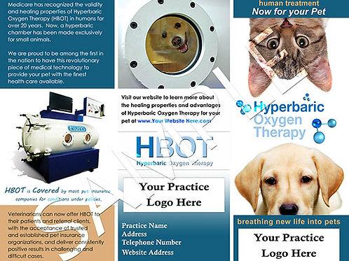 HBOT Client Brochures