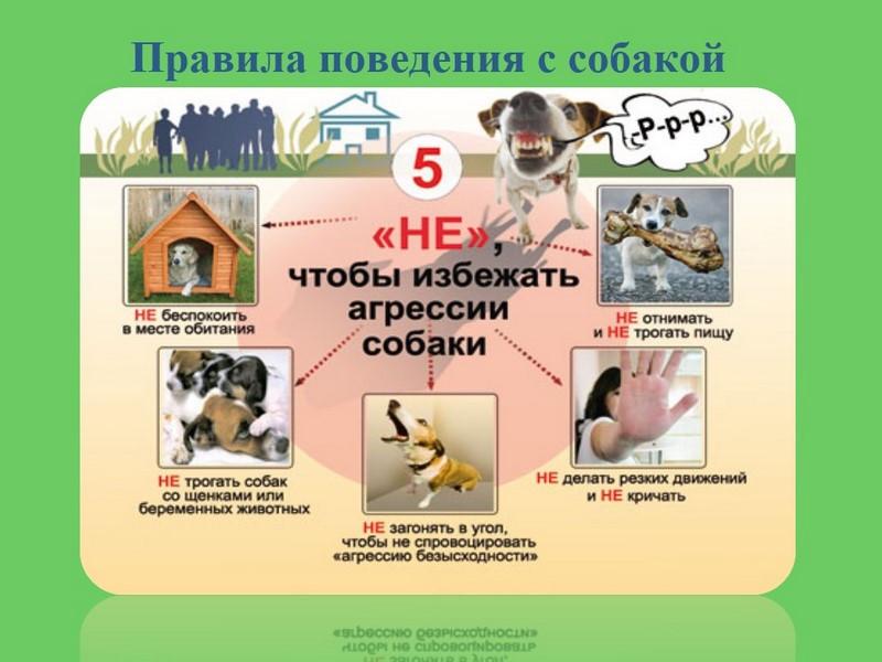 hello_html_m75b9c5bf.jpg
