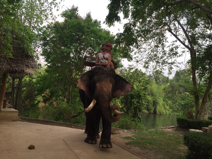 Riding Elephant in Chiang Mai, Thailand