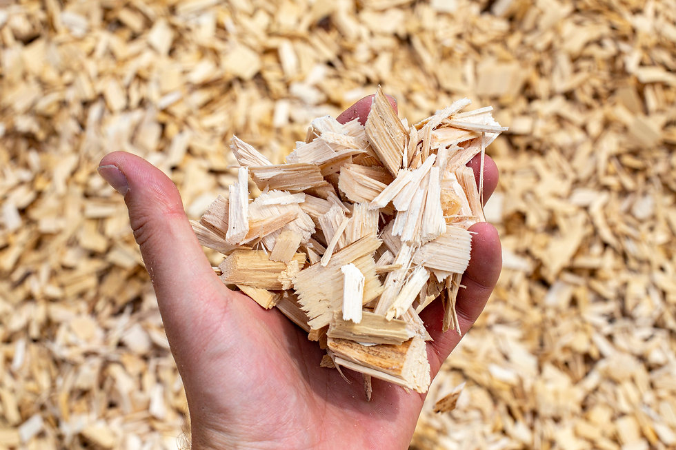 A hand full of wood chips with a backgro
