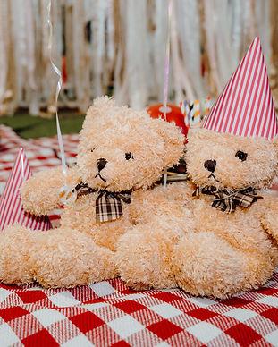 Teddy Bear Picnic-2.jpg