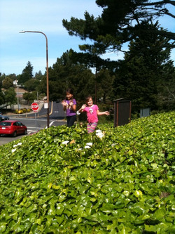 2015-03-21 Clean up day 2015 20.jpg