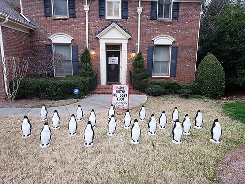 Penguins by the Yard