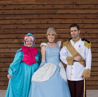 Cinderella Princess Theme