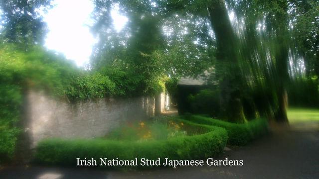 Irish International Stud/ Japanese Gardens