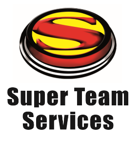 logo for STS.png