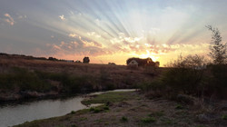 Guinea Fowl Cottage at sunset