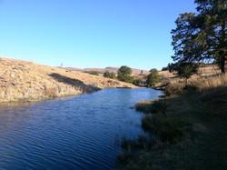 River near Bald Ibis Cottage
