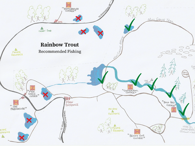Rainbow Trout Fishing Map Sept 2020.png
