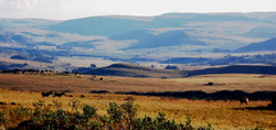 view towards Dullstroom from the game trail