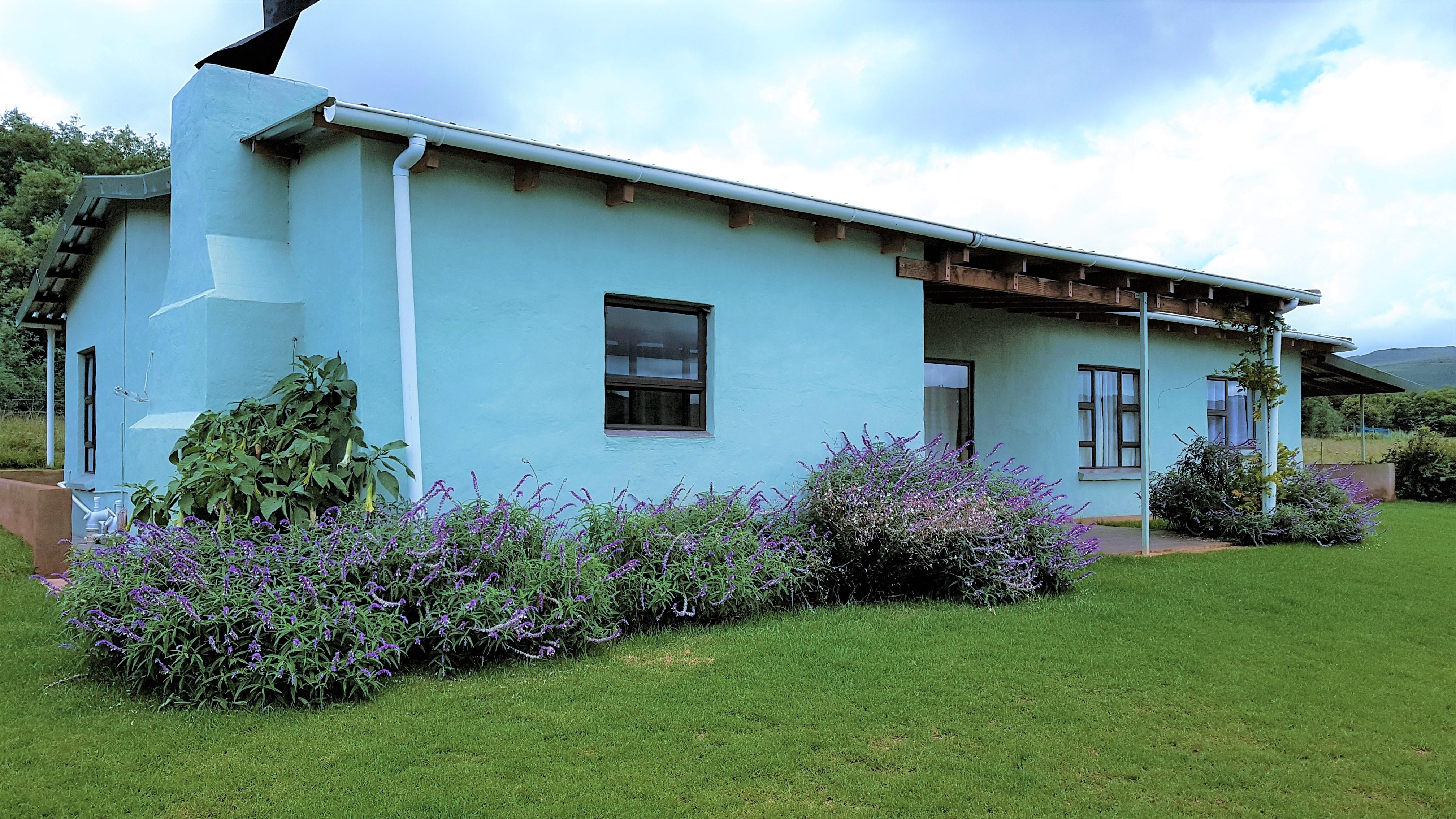 Briony Vine Cottage, Highland Giants Estate
