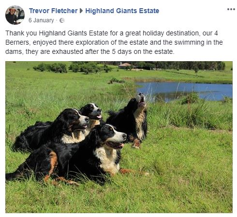 Highland Giants Estate