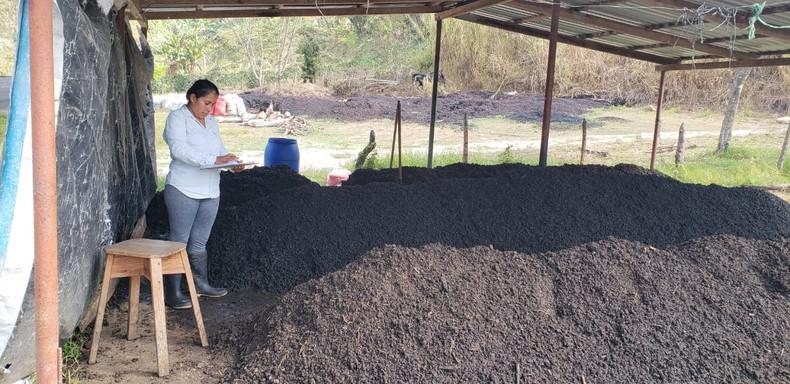 2.Socios de CAFESA, realizando activida