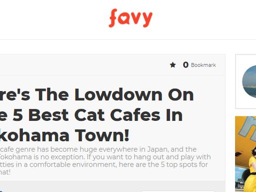 海外サイト「favy」に掲載していただきました