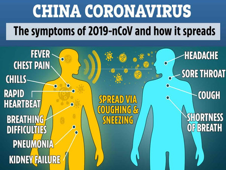 Government says it is ready to deal with the coronavirus