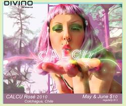 Calcu-Poster-Web-Big.jpg