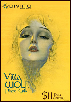 villa-wolf-poster-email