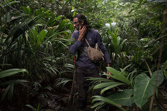 Russell Manning Permaculture Colombia